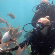 Kurs nurkowy PADI Scuba Diver_4