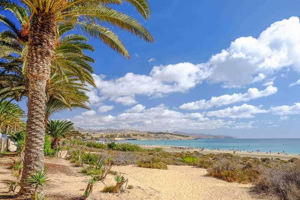 wycieczki fakultatywne fuerteventura